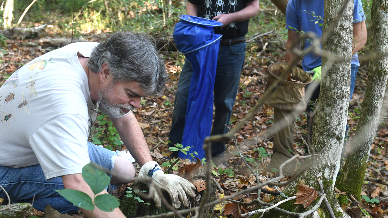 O'Keefe and students research biodiversity