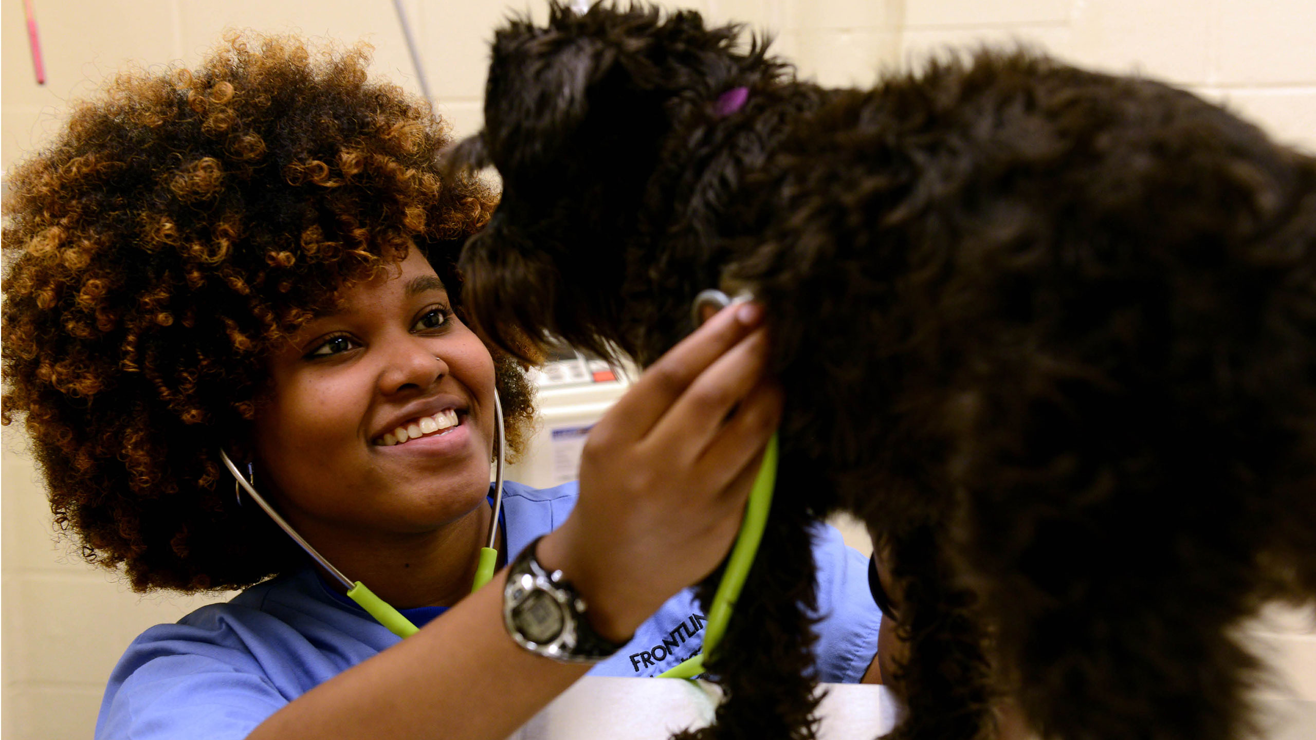 Veterinary Technology student with dog